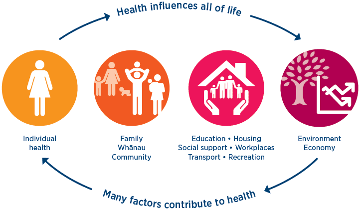 health in the wider context of people s lives ministry of health nz