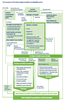 Diagram illustrating the structure of the health and disability sector in more detail.
