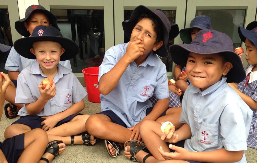Fruit in Schools programme | Ministry of Health NZ