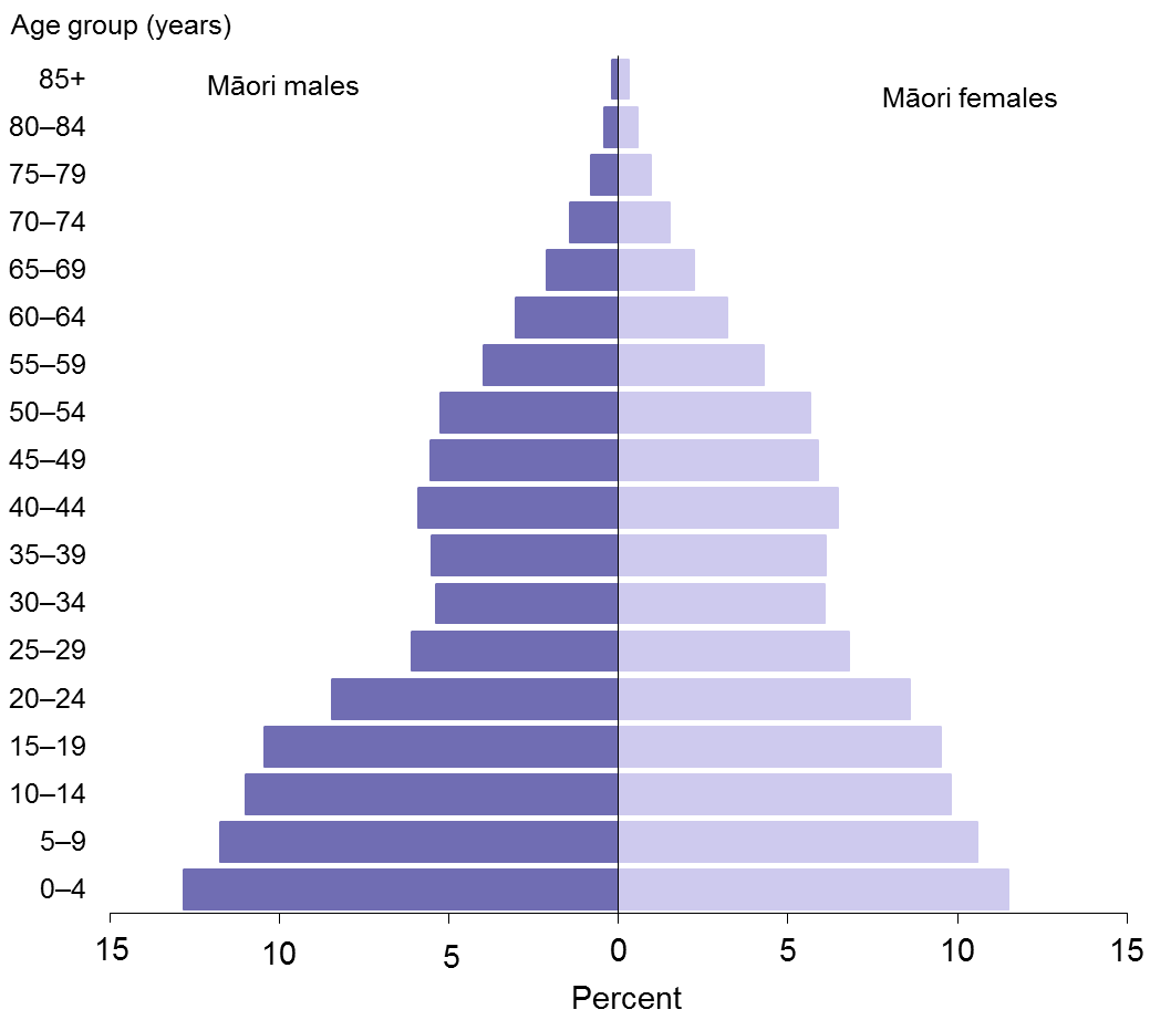 Title: Figure 1: Age distribution of the Māori population, males and females, 2013
