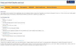 Fetal and Infant Deaths web tool.