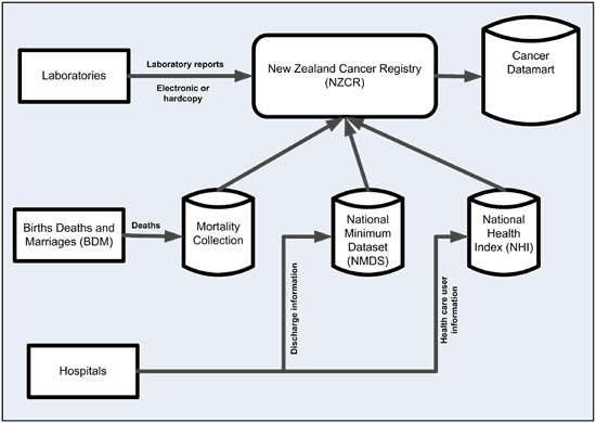 Diagram showing the sources that go into the New Zealand Cancer Registry. The registry sources are laboratories, the Mortality Collection, the National Minimum Dataset, and the National Health Index. Laboratories are connected to the registry by an arrow that reads 'laboratory reports – electronic or hardcopy'. The arrows for the other sources are not labelled. An arrow reading 'deaths' goes to the Mortality Collection from Births Deaths and Marriages. An arrow reading 'discharge information' goes to the National Minimum Dataset from hospitals. And an arrow reading 'health care user information' goes from hospitals to the National Health Index. These arrows all ultimately point to the cancer registry. A further arrow points from the registry to the Cancer Datamart.
