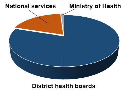 Piechart outlining Vote Health funding allocation