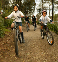 Photo of kids biking along a forest track.