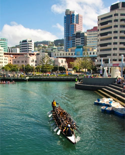 A dragonboating team at the Lagoon in Wellington Harbour.