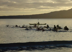 Photo of a group of swimmers in the harbour, with a kayaker alongside.
