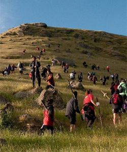 Photo of many people walking up a steep hill.