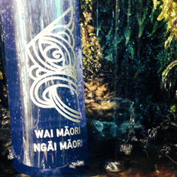 Photo of a sign in a grotto that reads 'Wai Māori Ngāi Māori'.