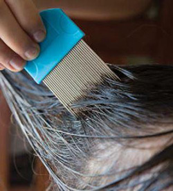 Photo of wet combing a child's hair with a fine-toothed metal comb.